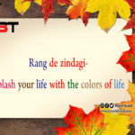 Rang de zindagi- splash your life with the colors of life